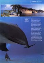 Environmental_bay_islands_2