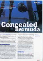 Concealed_bermuda_1